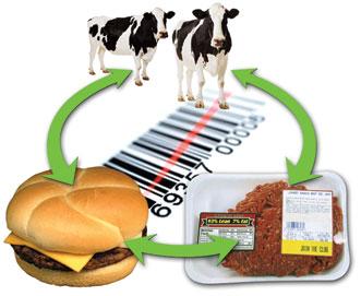 meattracking.jpg